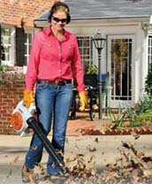 Stihl Garden Blowers / Vacuums