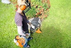Stihl Grass Trimmers