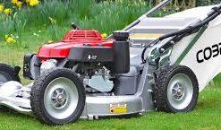 Professional Petrol Lawnmowers