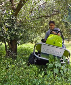 Grillo Ride on Brushcutter